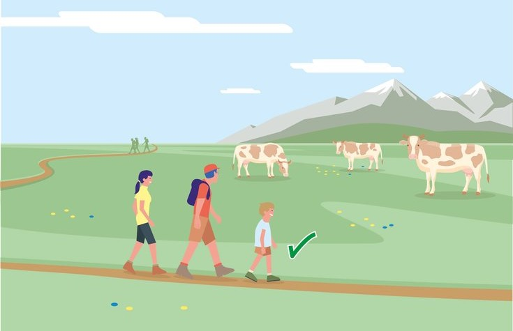 Safe mountain pastures - Rule 5 | © Federal Ministry for Sustainability and Tourism