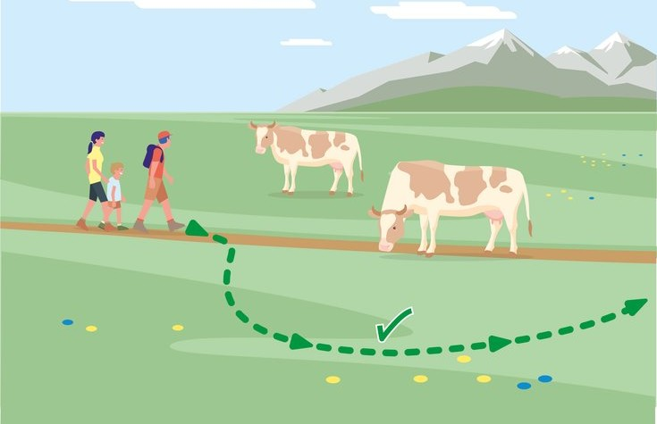 Safe mountain pastures - Rule 6 | © Federal Ministry for Sustainability and Tourism