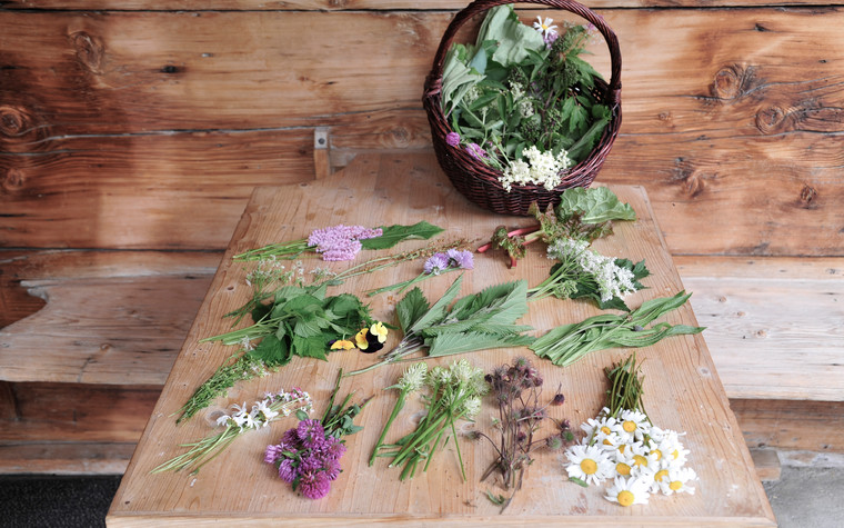 Flowers and mountain herbs | © Kleinwalsertal Tourismus eGen | Photographer: Christoffer Leitner