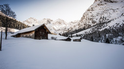 Wildental in winter | © Kleinwalsertal Tourismus eGen | Photographer: Dominik Berchtold