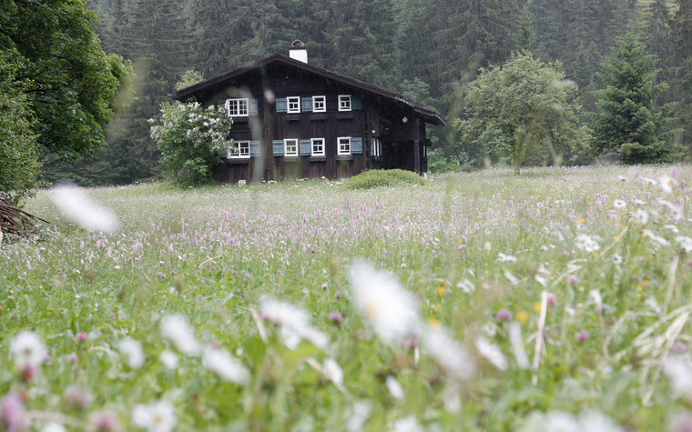 Flower field with old Walser house | © Kleinwalsertal Tourismus eGen | Photographer: Frank Drechsel