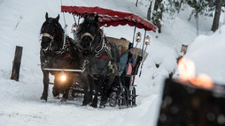 Sleigh ride in Advent | © Kleinwalsertal Tourismus eGen | Photographer: Dominik Berchtold